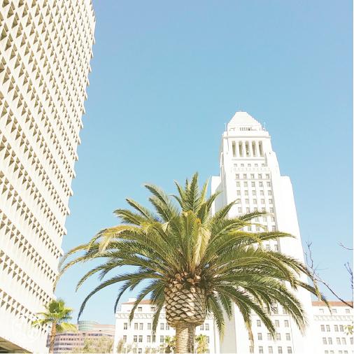 Renegade LA SF_2-01-01-01